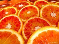 Carpaccio di finocchio e arance