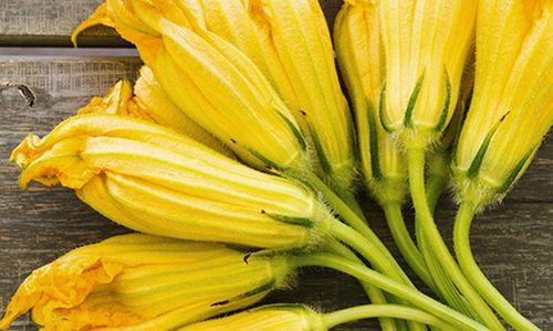 Ricetta Risotto allo speck e fiori di zucca