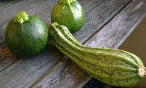 Ricetta Zucchine saporite